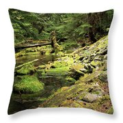Moss By The Stream Throw Pillow