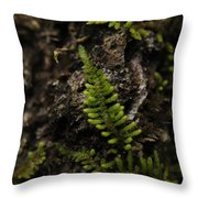 Moss Colony Throw Pillow