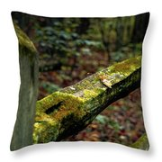 Moss Covered Fence Throw Pillow