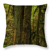 Moss Covered Giant Throw Pillow