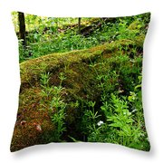 Moss Covered Log 2 Throw Pillow