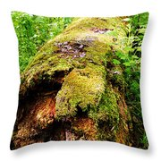 Moss Covered Log 3 Throw Pillow