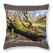 Moss Covered Log Throw Pillow