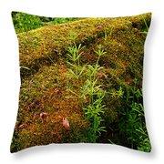 Moss Covered Log Throw Pillow