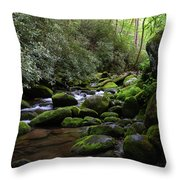 Moss Covered River Rocks Throw Pillow