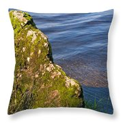 Moss Covered Rock And Ripples On The Water Throw Pillow