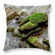 Moss Covered Rock Throw Pillow