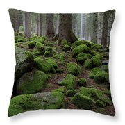 Moss Covered Rocks Throw Pillow