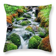 Moss Covered Stream Throw Pillow