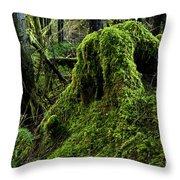 Moss Covered Tree Stump Throw Pillow
