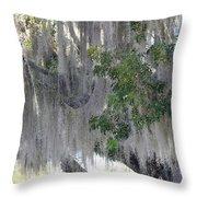 Moss Draped Tree Throw Pillow