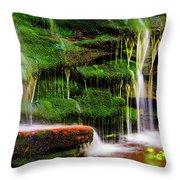 Moss Falls - 2981-2 Throw Pillow