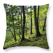 Moss Forest - Ginkakuji Temple - Japan Throw Pillow