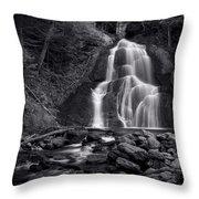 Moss Glen Falls - Monochrome Throw Pillow