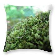 Moss I Throw Pillow