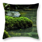 Moss In A Spring Throw Pillow