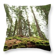 Moss On A Log Under The Cedars Throw Pillow