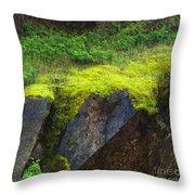 Moss On Rocks Throw Pillow
