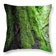Moss On Tree Throw Pillow