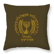 Institute Throw Pillow