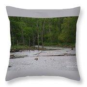Mossy Bog Throw Pillow