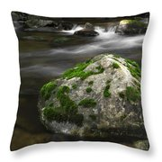 Mossy Boulder In Mountain Stream Throw Pillow