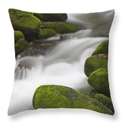 Mossy Boulders Throw Pillow