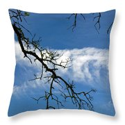 Mossy Branches Skyscape Throw Pillow