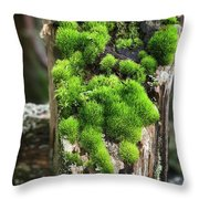 Mossy Fence - 365-321 Throw Pillow