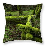 Mossy Fence 4 Throw Pillow