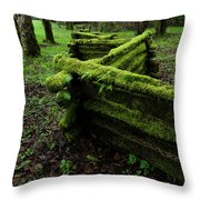 Mossy Fence 5 Throw Pillow by Bob Christopher