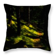 Mossy Forest Path Throw Pillow