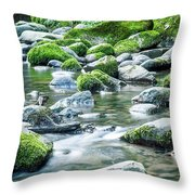 Mossy Forest Stream Throw Pillow