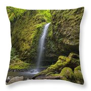 Mossy Grotto Falls In Summer Throw Pillow