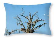 Mossy Landing Throw Pillow