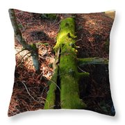 Mossy Log Throw Pillow
