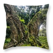 Mossy Old Tree Throw Pillow
