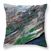 Mossy Rock Throw Pillow