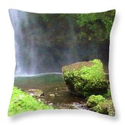 Mossy Rock Throw Pillow