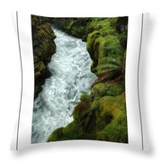 Mossy Rocks And Stream Poster Throw Pillow