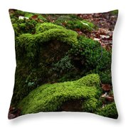Mossy Rocks In Spring Woods Throw Pillow