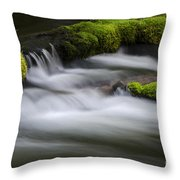 Mossy Rocks  Oregon 1 Throw Pillow