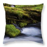Mossy Rocks Oregon 3 Throw Pillow