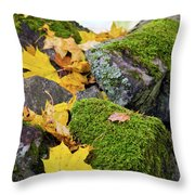 Mossy Stones And Maple Leaves Throw Pillow