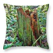 Mossy Stump Throw Pillow