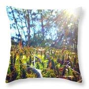 Mossy Sunburst Throw Pillow