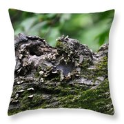Mossy Tree Knot Throw Pillow