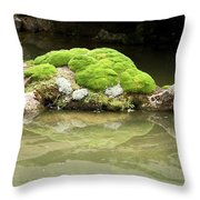 Mossy Turtle Rock Throw Pillow