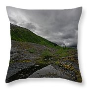 Mossy View Throw Pillow
