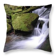 Mossy Waterfall Landscape Throw Pillow